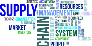 Curso Basics of Supply Chain Management (BSCM)